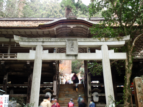 2010紅葉(鞍馬)11.jpg