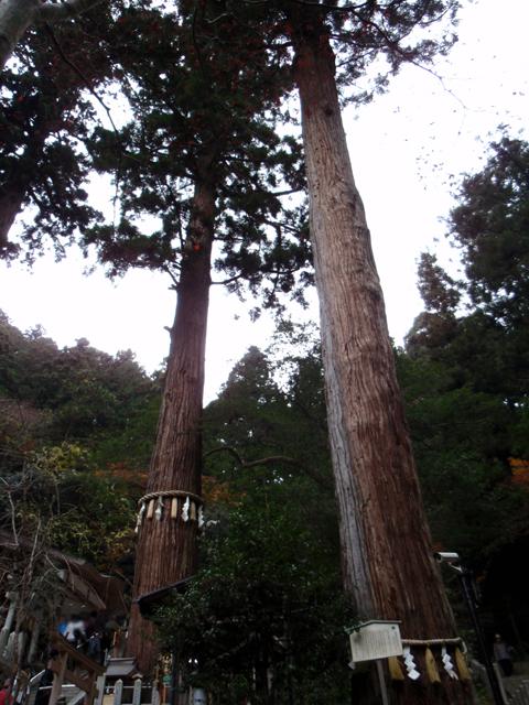 2010紅葉(鞍馬)12.jpg