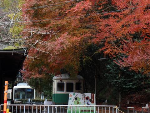 2010紅葉(鞍馬)4.jpg