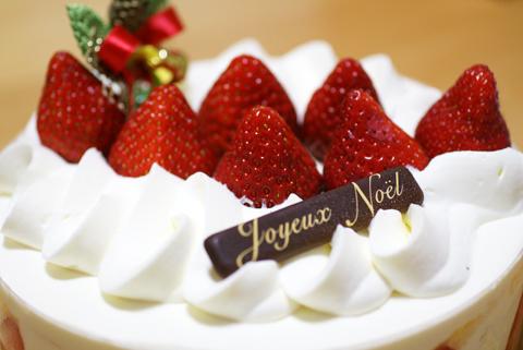 2010Xmas cake2-1.jpg