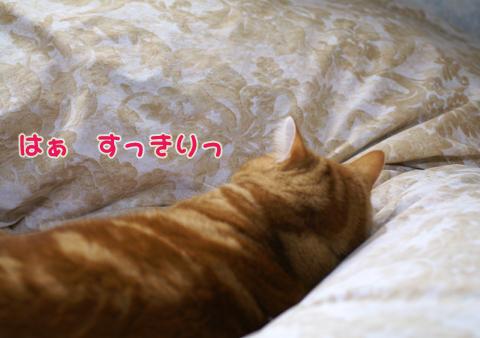 2011ひな祭り(すっぴん).jpg