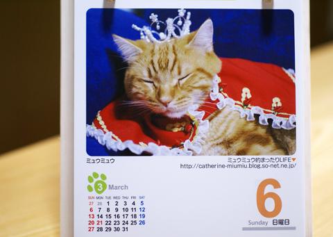 2011猫友カレンダー1.jpg
