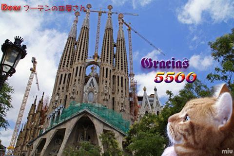5500nice card(to フーテンの皿屋△).jpg