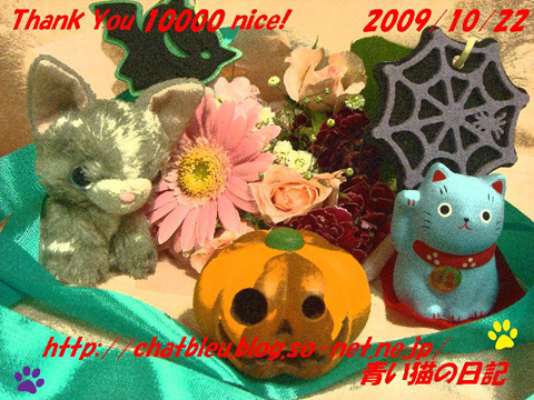 ChatBleu_10000nice card.jpg