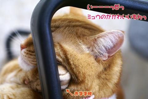 すねすね(いーだ).jpg