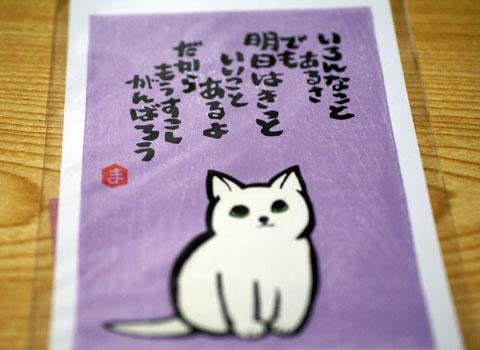 ねこまや(カード2).jpg