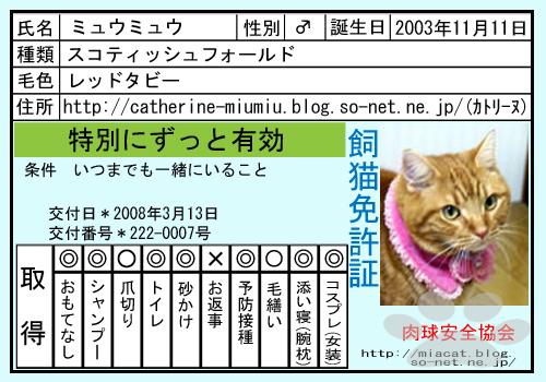 ネコの免許書.jpg
