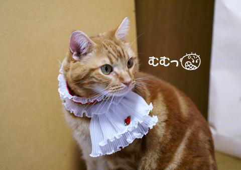 ミュウ王子(むむっ).jpg
