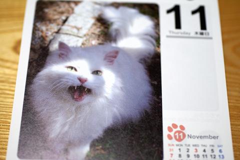 猫友カレンダー2010みゅう.jpg