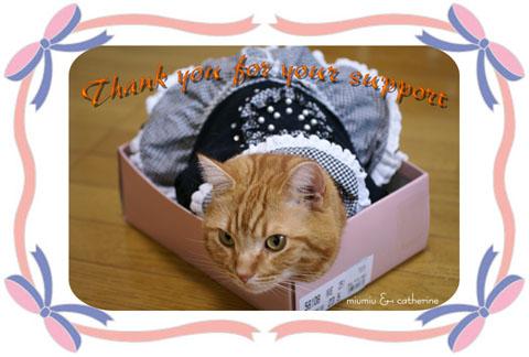 美人猫グランプリサンキューカード.jpg