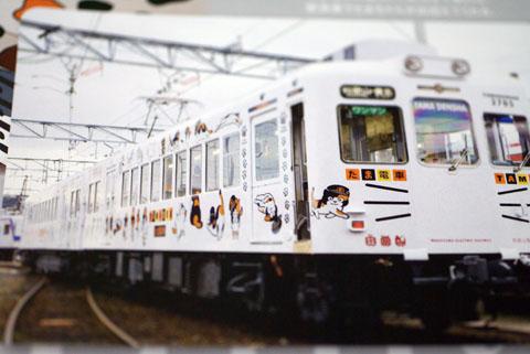 NEKO(たま電車).jpg