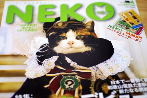 NEKO(たま駅長).jpg