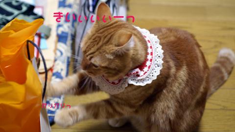 sigh(ガリガリ).jpg