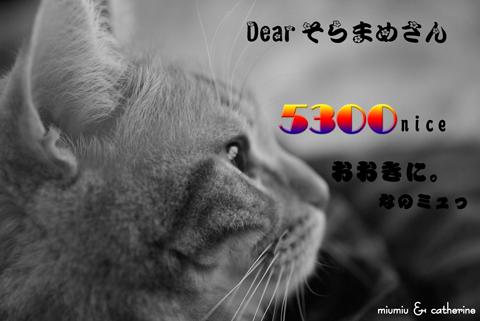 5300nice card(toそらまめさん).jpg