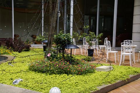 白浜(ホテルの庭).jpg